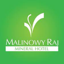 Nasz nowy projekt w Hotelu Malinowy Raj w Solcu Zdroju (styczeń 2019)