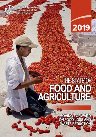 Nowy raport FAO o (nie)marnowaniu jedzenia