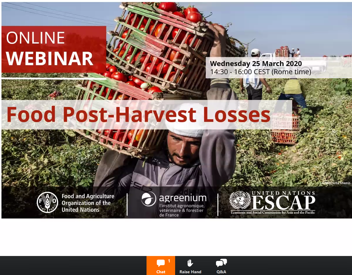 FAO webinar o food waste